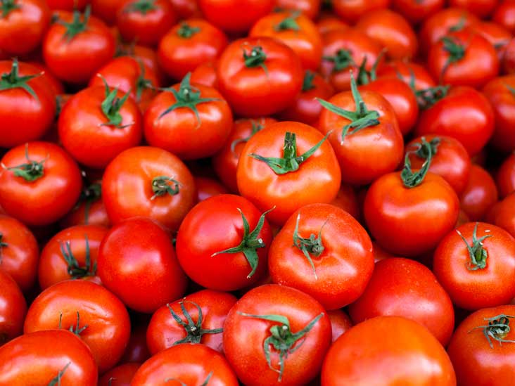 Women are making bumper profits by cultivating tomatoes in Jharkhand