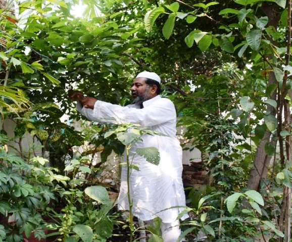 Environmental protection with the help of Medicinal plants