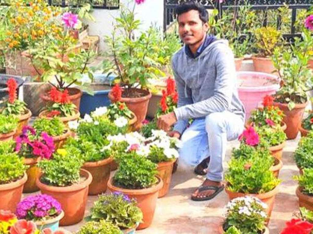 Farmer Anubhav Verma cultivates fruits, flowers, vegetables and spices in the terrace garden