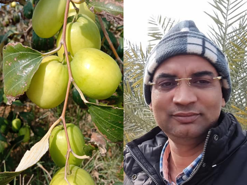 Dr Ajay Bohra known for apple plum farming